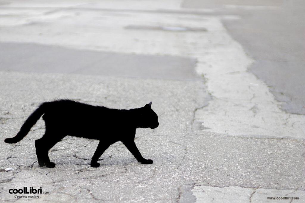 Superstition et création de livre