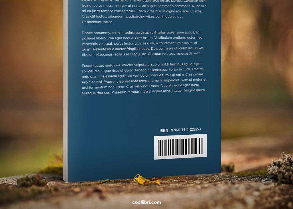 ISBN livre