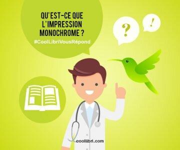 Qu'est-ce qu'une impression monochrome ?